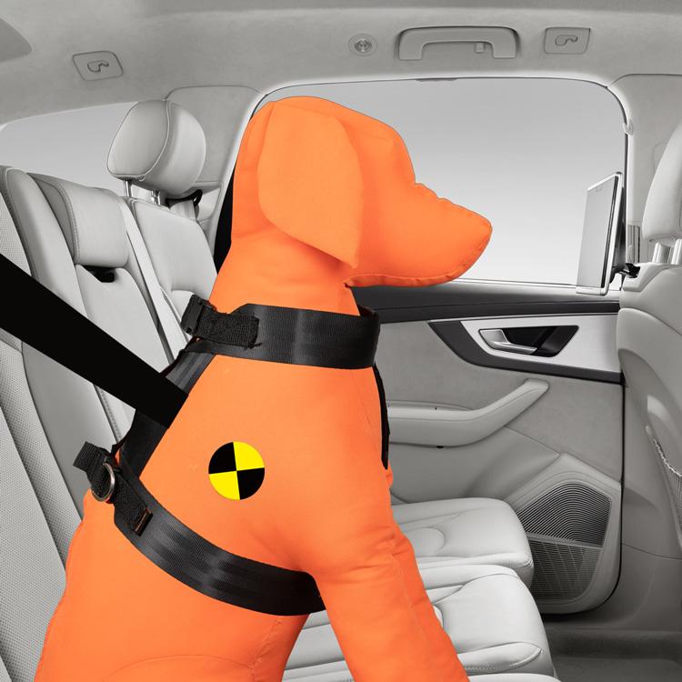 Trailstone™ Safety Range