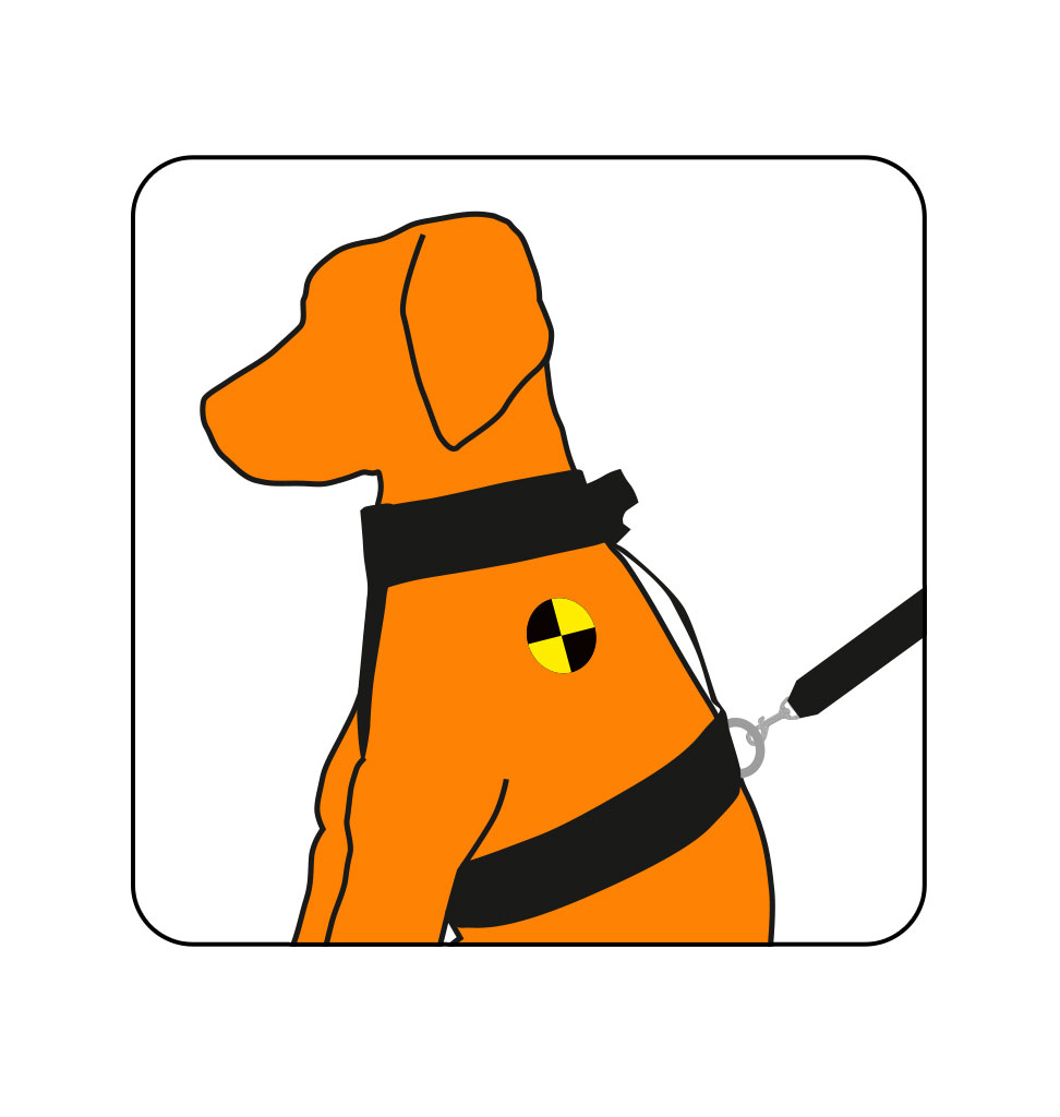 Trailstone hondenriem 3
